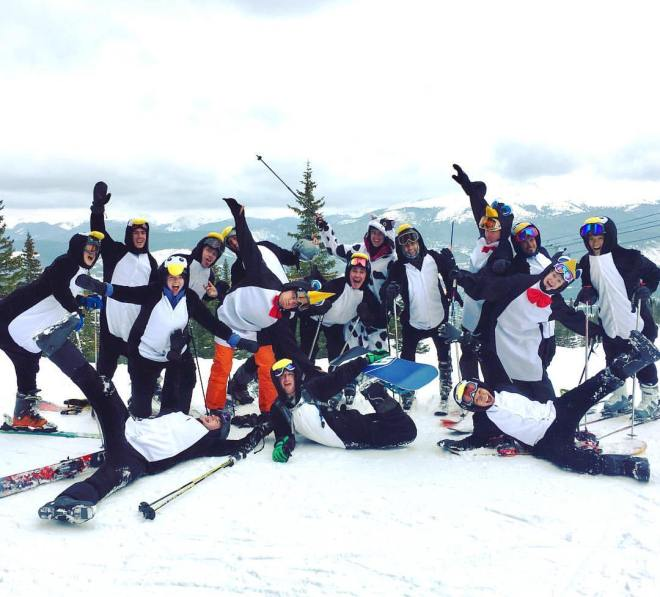penguins-at-breck